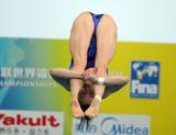 http://img296.imagevenue.com/loc402/th_44540_diving_world_champs_shanghai_2011_190_122_402lo.jpg